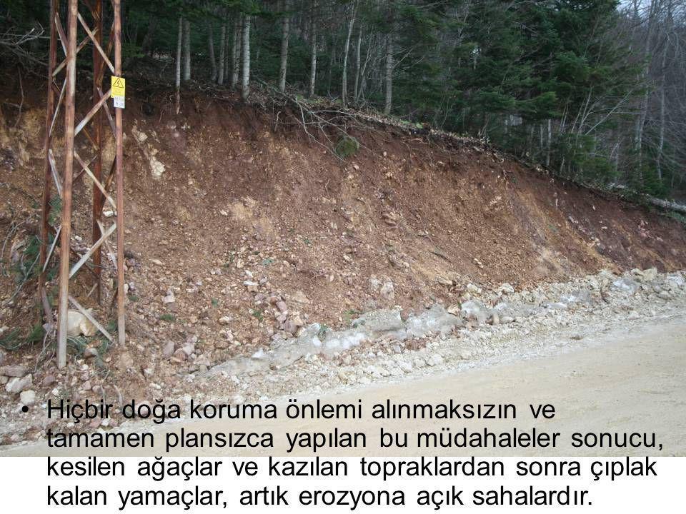 Hiçbir doğa koruma önlemi alınmaksızın ve tamamen plansızca yapılan bu müdahaleler sonucu, kesilen ağaçlar ve kazılan topraklardan sonra çıplak kalan