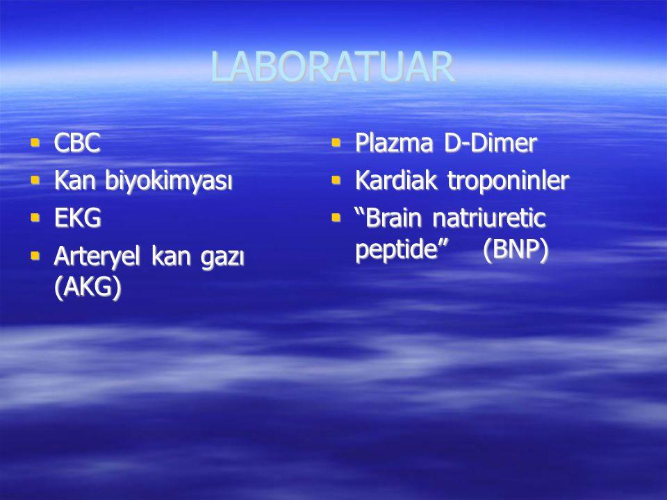"""LABORATUAR  CBC  Kan biyokimyası  EKG  Arteryel kan gazı (AKG)  Plazma D-Dimer  Kardiak troponinler  """"Brain natriuretic peptide"""" (BNP)"""