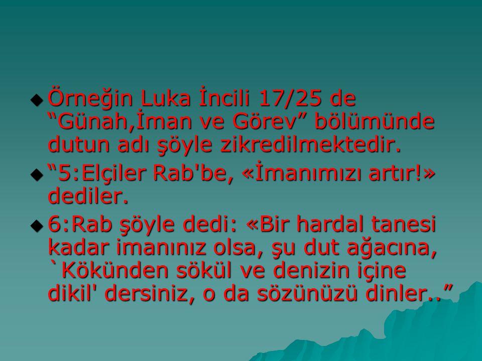 """ Örneğin Luka İncili 17/25 de """"Günah,İman ve Görev"""" bölümünde dutun adı şöyle zikredilmektedir.  """"5:Elçiler Rab'be, «İmanımızı artır!» dediler.  6:"""