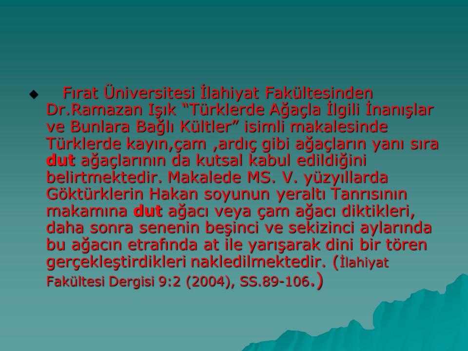""" Fırat Üniversitesi İlahiyat Fakültesinden Dr.Ramazan Işık """"Türklerde Ağaçla İlgili İnanışlar ve Bunlara Bağlı Kültler"""" isimli makalesinde Türklerde"""
