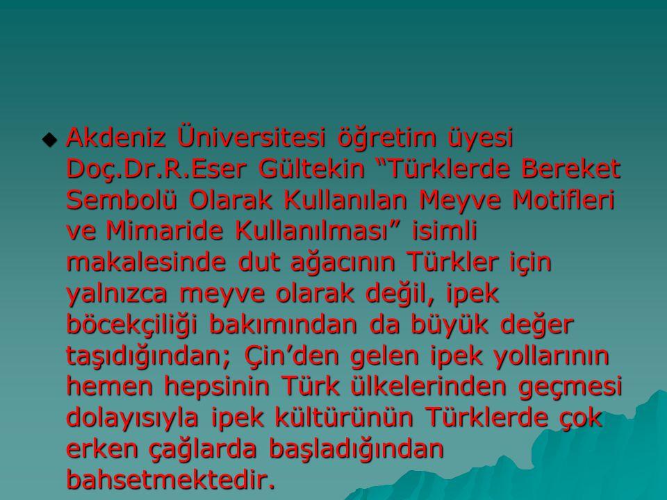 """ Akdeniz Üniversitesi öğretim üyesi Doç.Dr.R.Eser Gültekin """"Türklerde Bereket Sembolü Olarak Kullanılan Meyve Motifleri ve Mimaride Kullanılması"""" isi"""