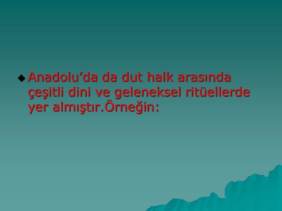  Anadolu'da da dut halk arasında çeşitli dini ve geleneksel ritüellerde yer almıştır.Örneğin: