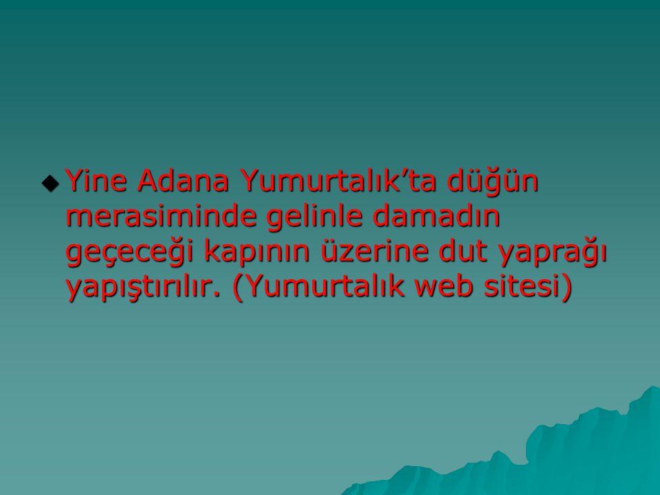  Yine Adana Yumurtalık'ta düğün merasiminde gelinle damadın geçeceği kapının üzerine dut yaprağı yapıştırılır. (Yumurtalık web sitesi)