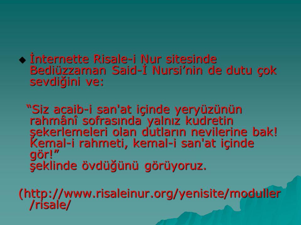 """ İnternette Risale-i Nur sitesinde Bediüzzaman Said-İ Nursi'nin de dutu çok sevdiğini ve: """"Siz acaib-i san'at içinde yeryüzünün rahmânî sofrasında ya"""
