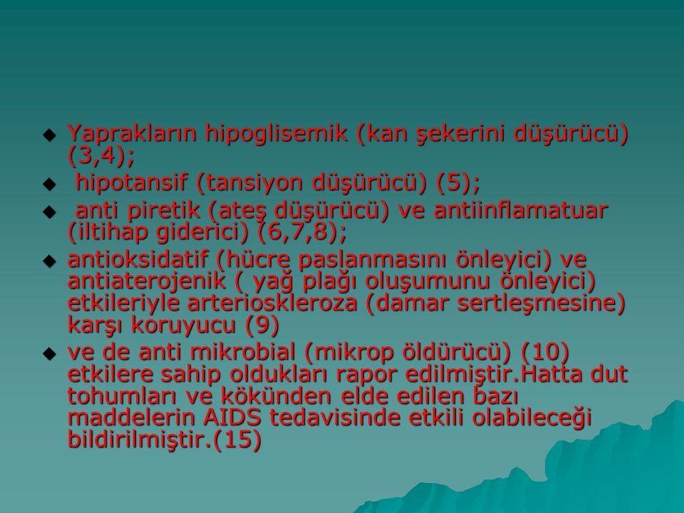  Yaprakların hipoglisemik (kan şekerini düşürücü) (3,4);  hipotansif (tansiyon düşürücü) (5);  anti piretik (ateş düşürücü) ve antiinflamatuar (ilt