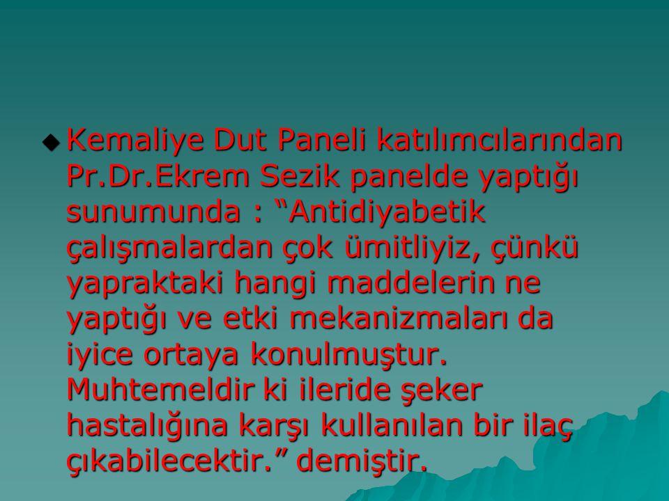 """ Kemaliye Dut Paneli katılımcılarından Pr.Dr.Ekrem Sezik panelde yaptığı sunumunda : """"Antidiyabetik çalışmalardan çok ümitliyiz, çünkü yapraktaki han"""