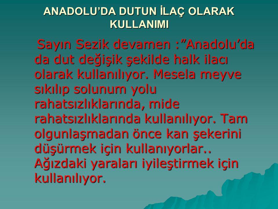 """ANADOLU'DA DUTUN İLAÇ OLARAK KULLANIMI Sayın Sezik devamen :""""Anadolu'da da dut değişik şekilde halk ilacı olarak kullanılıyor. Mesela meyve sıkılıp so"""