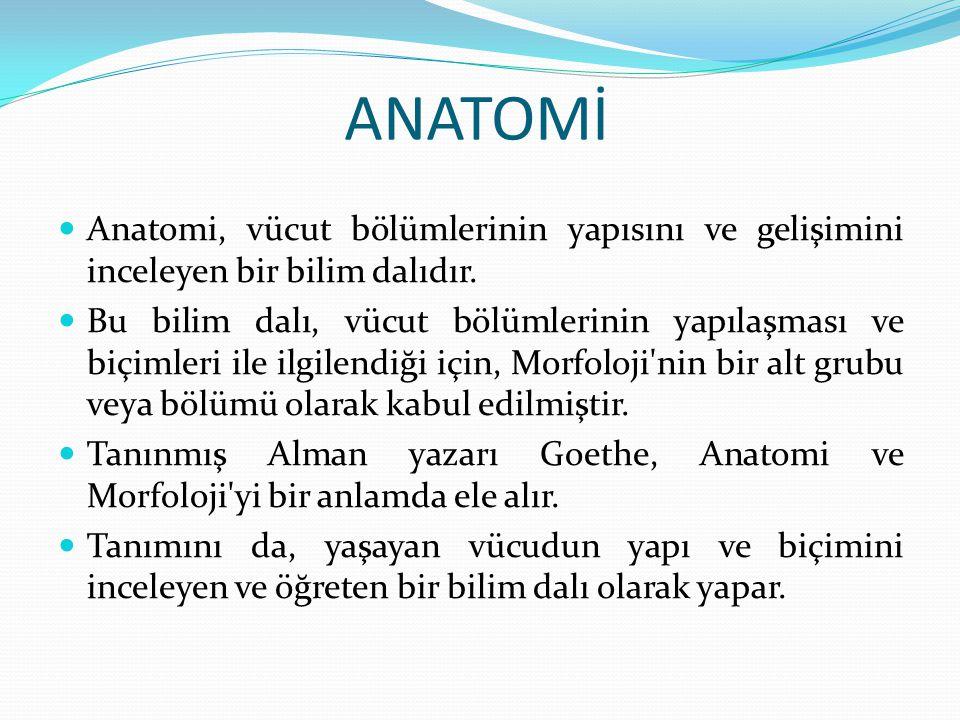 ANATOMİ Anatomi, vücut bölümlerinin yapısını ve gelişimini inceleyen bir bilim dalıdır. Bu bilim dalı, vücut bölümlerinin yapılaşması ve biçimleri ile
