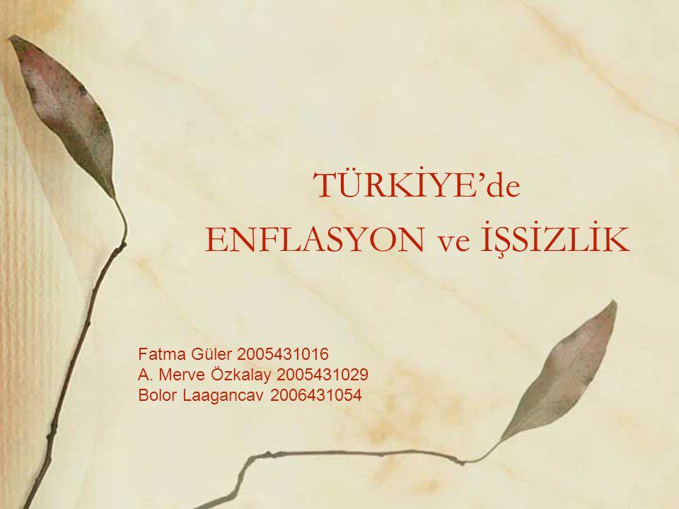 TÜRKİYE'de ENFLASYON ve İŞSİZLİK Fatma Güler 2005431016 A. Merve Özkalay 2005431029 Bolor Laagancav 2006431054
