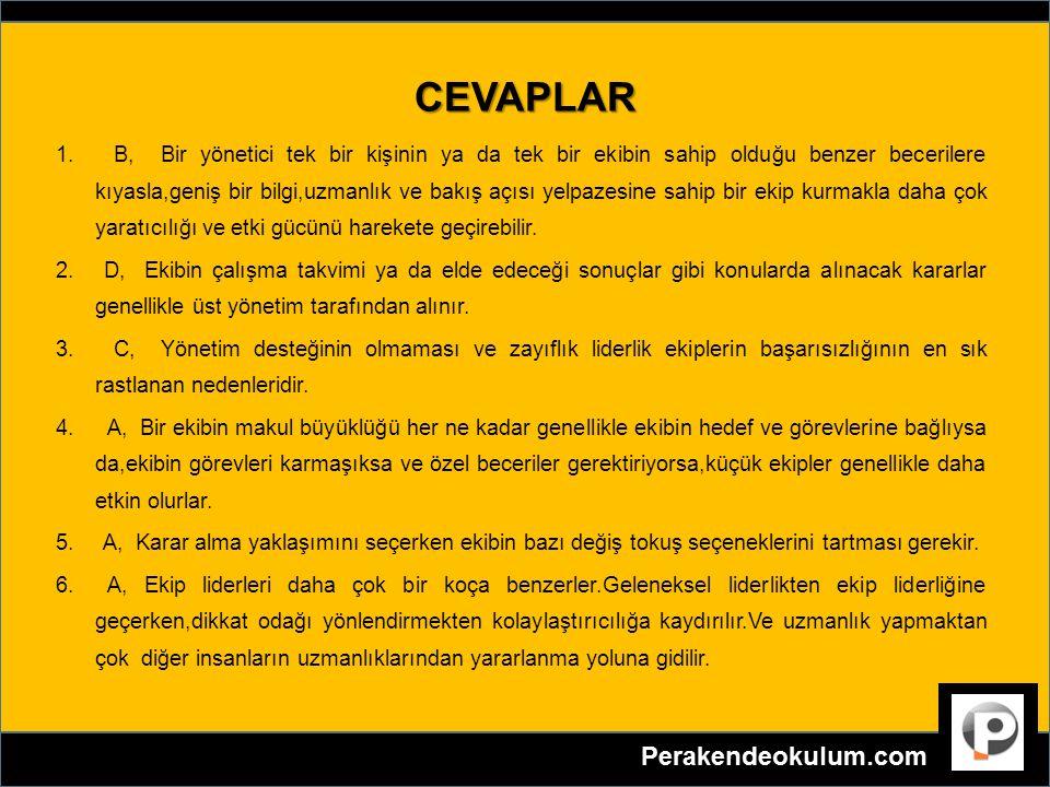 CEVAPLAR 1. B, Bir yönetici tek bir kişinin ya da tek bir ekibin sahip olduğu benzer becerilere kıyasla,geniş bir bilgi,uzmanlık ve bakış açısı yelpaz