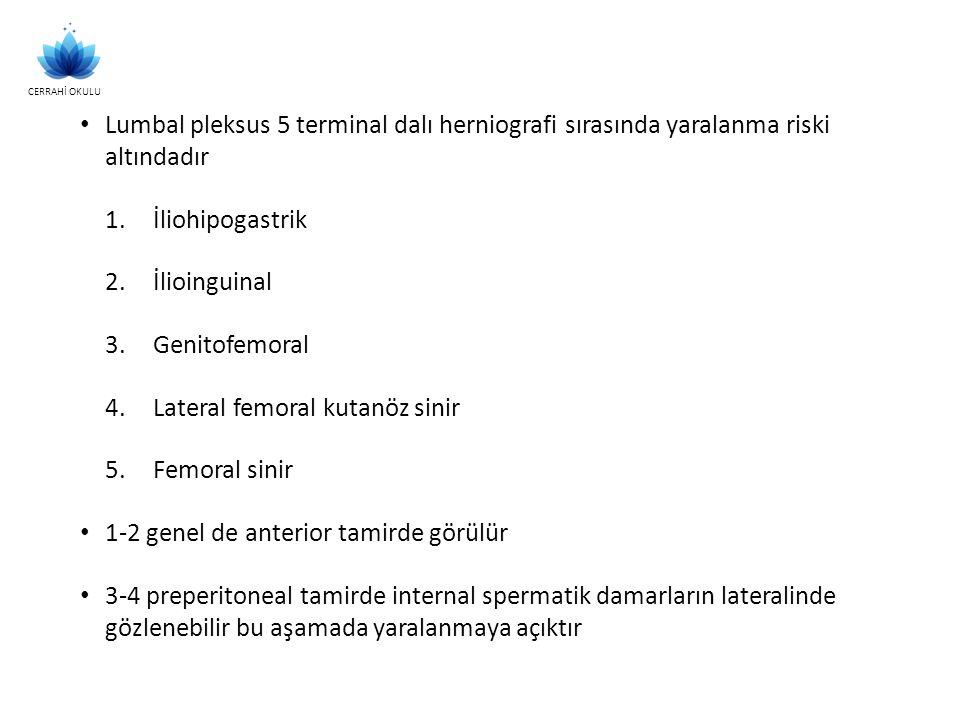 Lumbal pleksus 5 terminal dalı herniografi sırasında yaralanma riski altındadır 1.İliohipogastrik 2.İlioinguinal 3.Genitofemoral 4.Lateral femoral kut