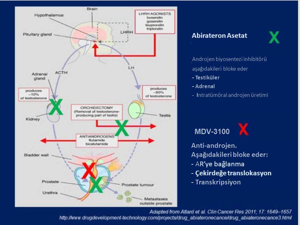 Abirateron Asetat Androjen biyosentezi inhibitörü aşağıdakileri bloke eder - Testiküler - Adrenal - Intratümöral androjen üretimi MDV-3100 Anti-androj