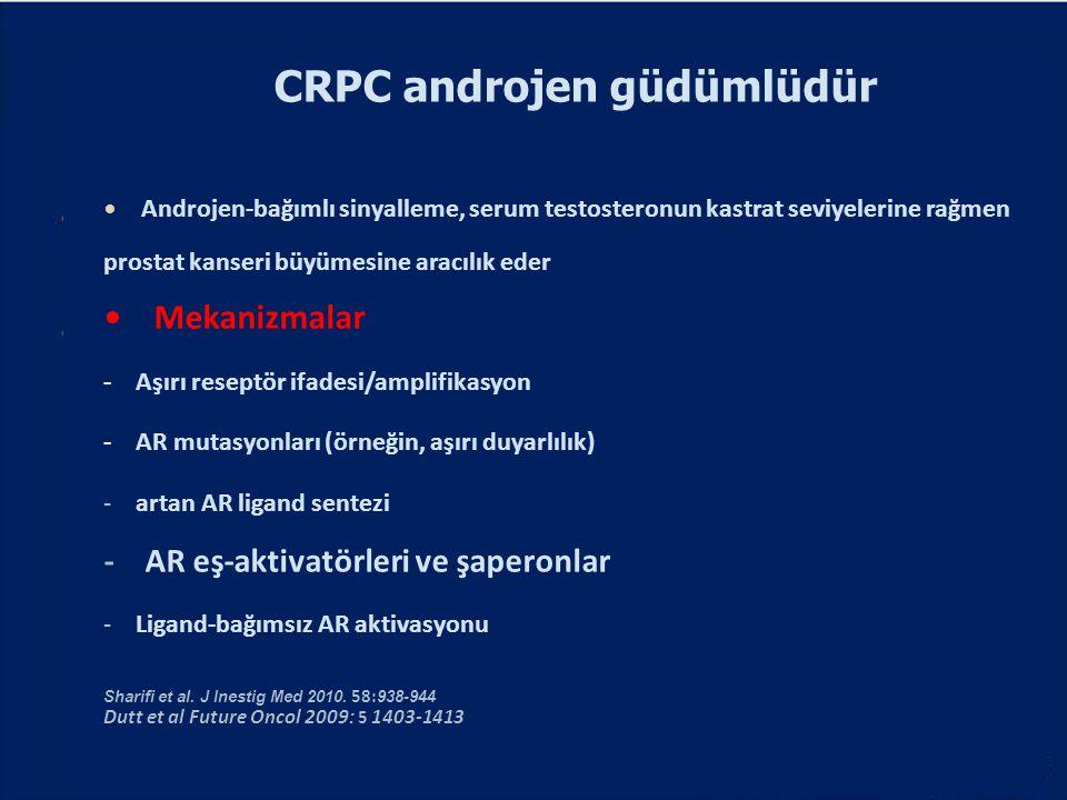 CRPC androjen güdümlüdür Androjen-bağımlı sinyalleme, serum testosteronun kastrat seviyelerine rağmen prostat kanseri büyümesine aracılık eder Mekaniz