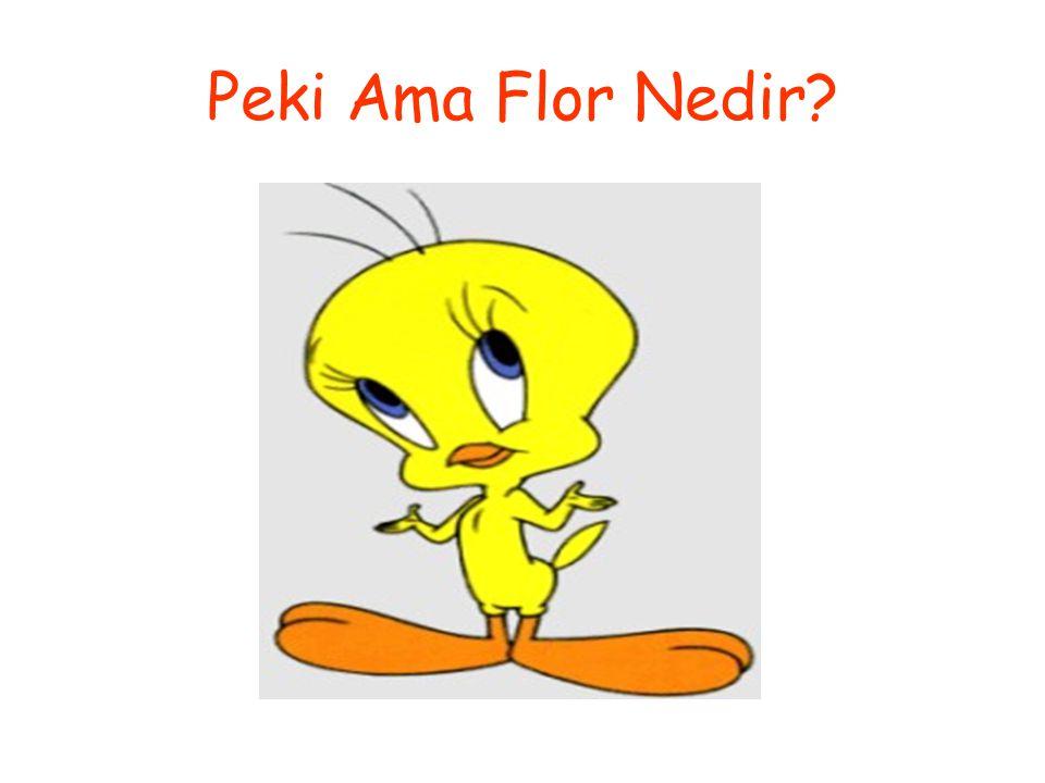Peki Ama Flor Nedir?