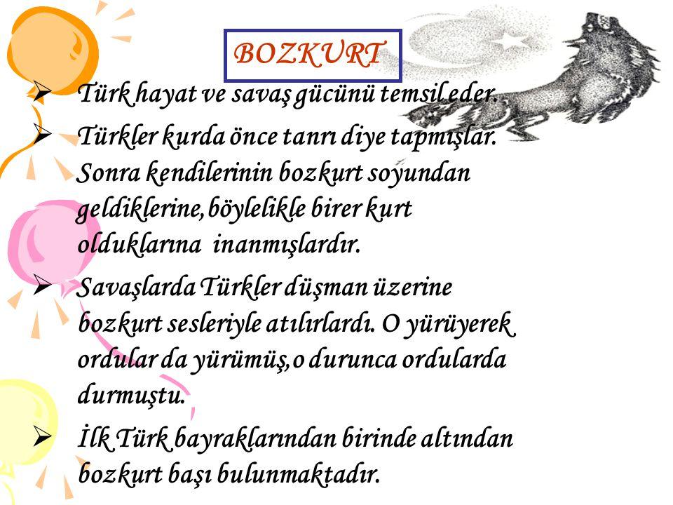  Türk hayat ve savaş gücünü temsil eder.  Türkler kurda önce tanrı diye tapmışlar. Sonra kendilerinin bozkurt soyundan geldiklerine,böylelikle birer