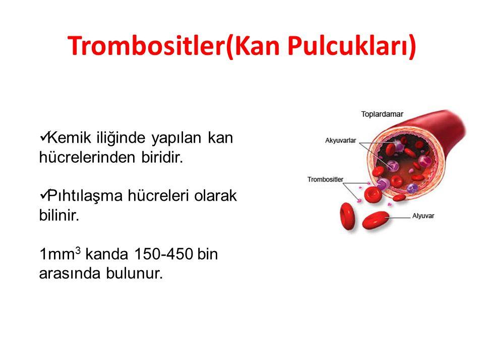 Trombositler(Kan Pulcukları) Kemik iliğinde yapılan kan hücrelerinden biridir. Pıhtılaşma hücreleri olarak bilinir. 1mm 3 kanda 150-450 bin arasında b