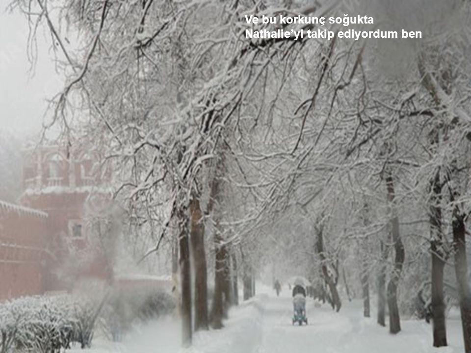 Moskova, Ukrayna'nın ovaları Ve Champs-Élysées