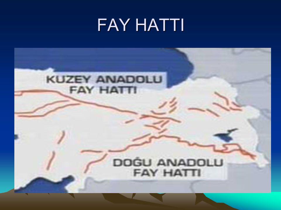 FAY HATTI