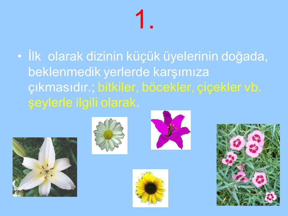 1. İlk olarak dizinin küçük üyelerinin doğada, beklenmedik yerlerde karşımıza çıkmasıdır.; bitkiler, böcekler, çiçekler vb. şeylerle ilgili olarak.
