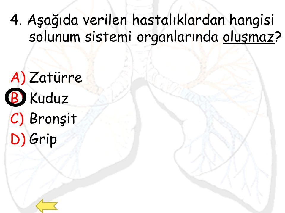 4. Aşağıda verilen hastalıklardan hangisi solunum sistemi organlarında oluşmaz? A)Zatürre B)Kuduz C)Bronşit D)Grip