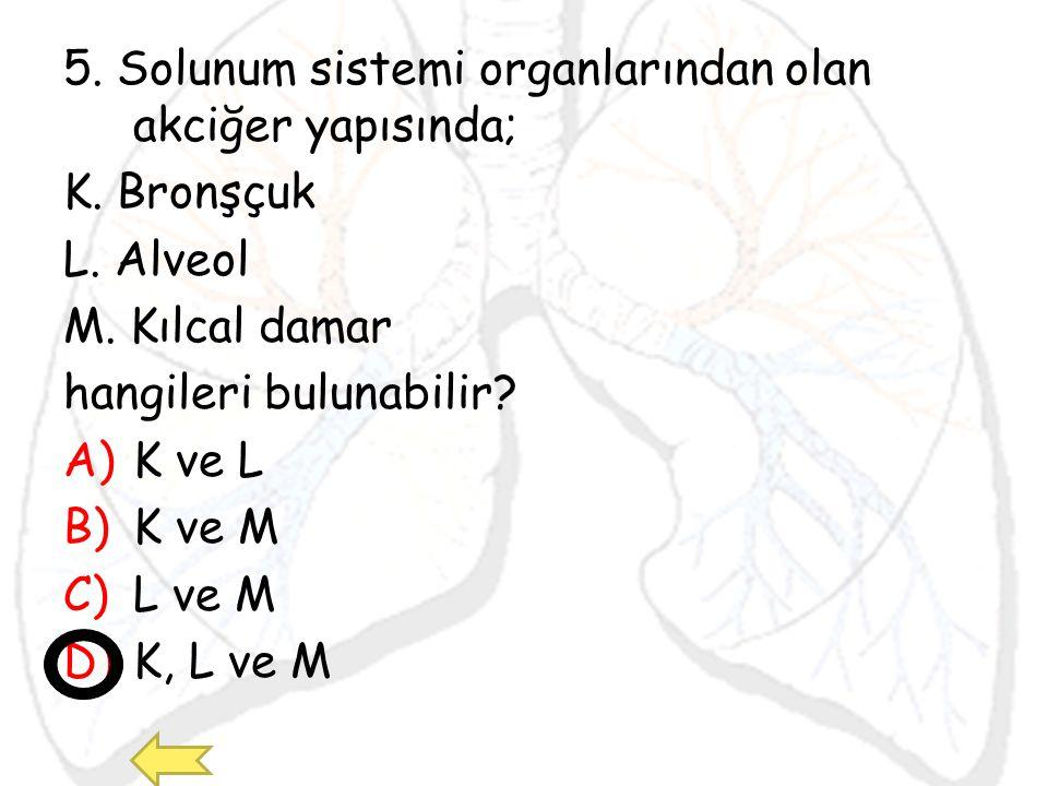 5. Solunum sistemi organlarından olan akciğer yapısında; K. Bronşçuk L. Alveol M. Kılcal damar hangileri bulunabilir? A)K ve L B)K ve M C)L ve M D)K,