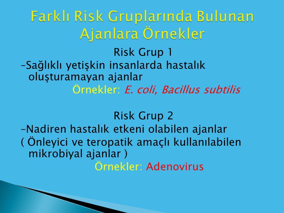 Risk Grup 1 –Sağlıklı yetişkin insanlarda hastalık oluşturamayan ajanlar Örnekler: E. coli, Bacillus subtilis Risk Grup 2 –Nadiren hastalık etkeni ola