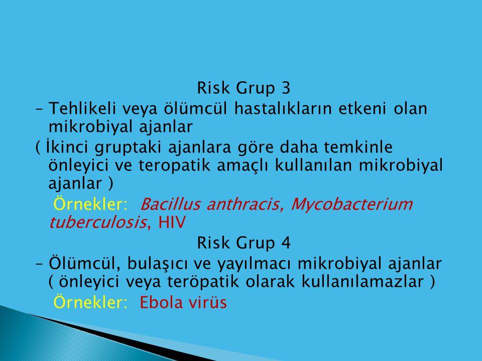 Risk Grup 3 – Tehlikeli veya ölümcül hastalıkların etkeni olan mikrobiyal ajanlar ( İkinci gruptaki ajanlara göre daha temkinle önleyici ve teropatik