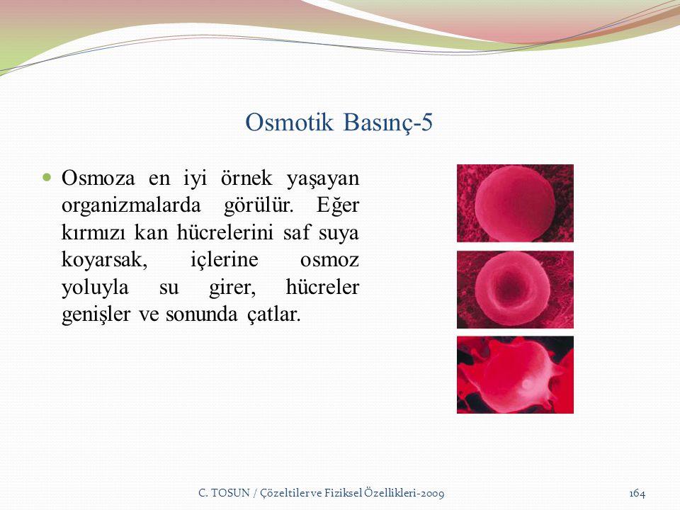 Osmotik Basınç-5 Osmoza en iyi örnek yaşayan organizmalarda görülür.