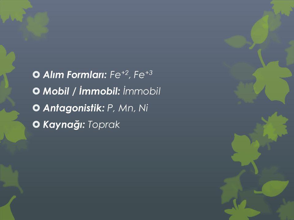  Alım Formları: Fe +2, Fe +3  Mobil / İmmobil: İmmobil  Antagonistik: P, Mn, Ni  Kaynağı: Toprak
