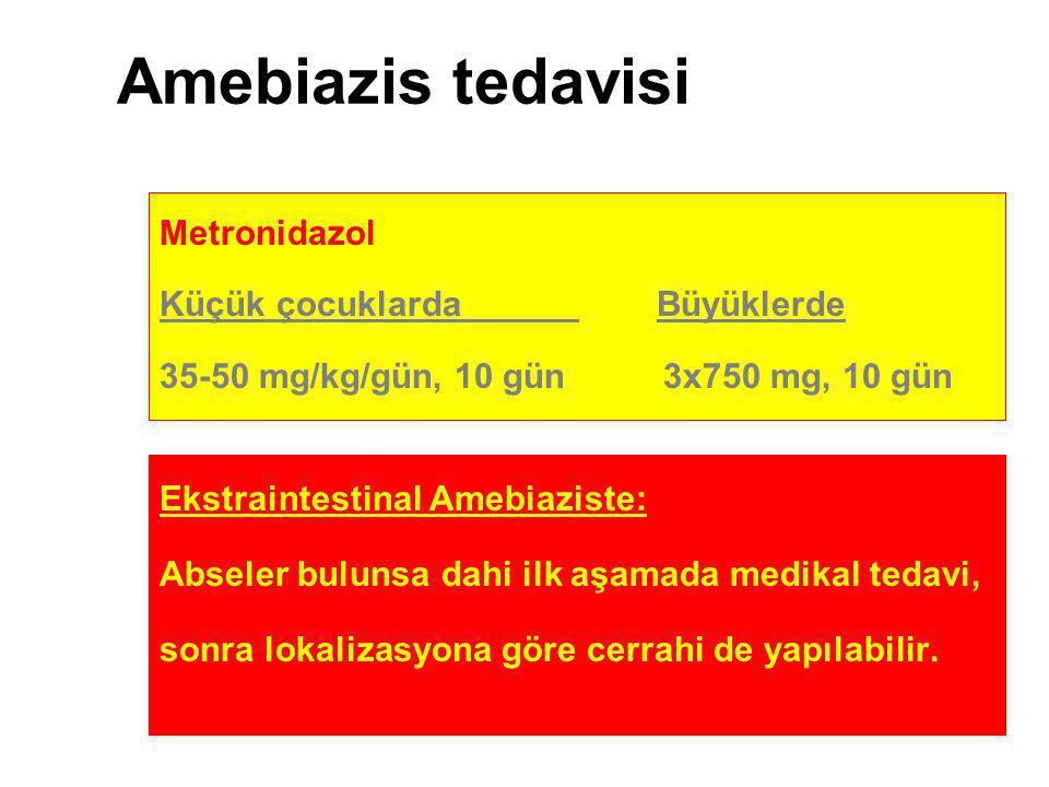 Amebiazis tedavisi Metronidazol Küçük çocuklarda Büyüklerde 35-50 mg/kg/gün, 10 gün 3x750 mg, 10 gün Ekstraintestinal Amebiaziste: Abseler bulunsa dah