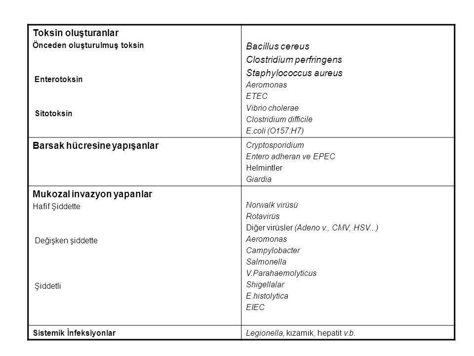 Toksin oluşturanlar Önceden oluşturulmuş toksin Enterotoksin Sitotoksin Bacillus cereus Clostridium perfringens Staphylococcus aureus Aeromonas ETEC V