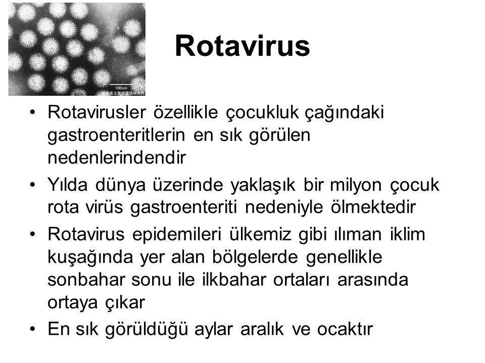 Rotavirus Rotavirusler özellikle çocukluk çağındaki gastroenteritlerin en sık görülen nedenlerindendir Yılda dünya üzerinde yaklaşık bir milyon çocuk