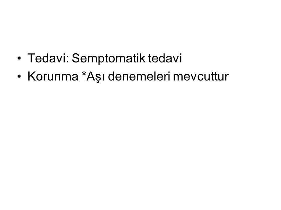 Tedavi: Semptomatik tedavi Korunma *Aşı denemeleri mevcuttur