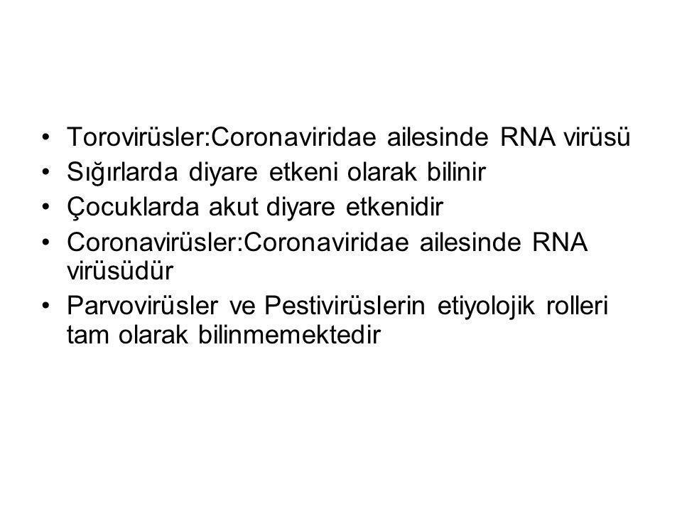Torovirüsler:Coronaviridae ailesinde RNA virüsü Sığırlarda diyare etkeni olarak bilinir Çocuklarda akut diyare etkenidir Coronavirüsler:Coronaviridae