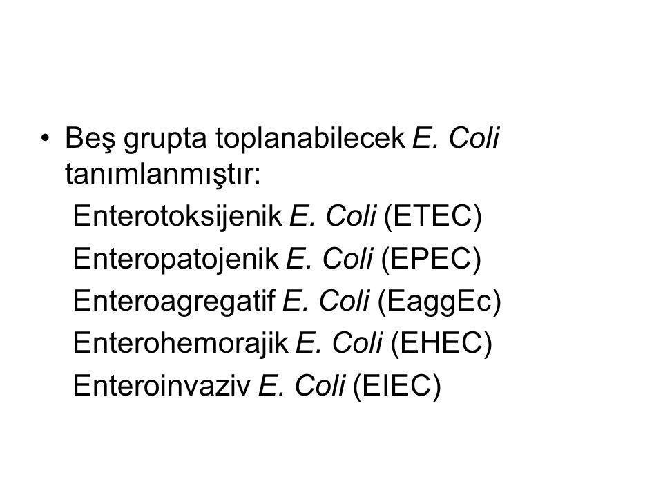 Beş grupta toplanabilecek E. Coli tanımlanmıştır: Enterotoksijenik E. Coli (ETEC) Enteropatojenik E. Coli (EPEC) Enteroagregatif E. Coli (EaggEc) Ente