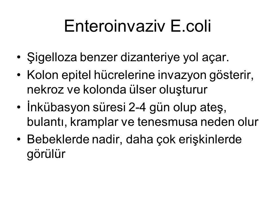 Enteroinvaziv E.coli Şigelloza benzer dizanteriye yol açar. Kolon epitel hücrelerine invazyon gösterir, nekroz ve kolonda ülser oluşturur İnkübasyon s
