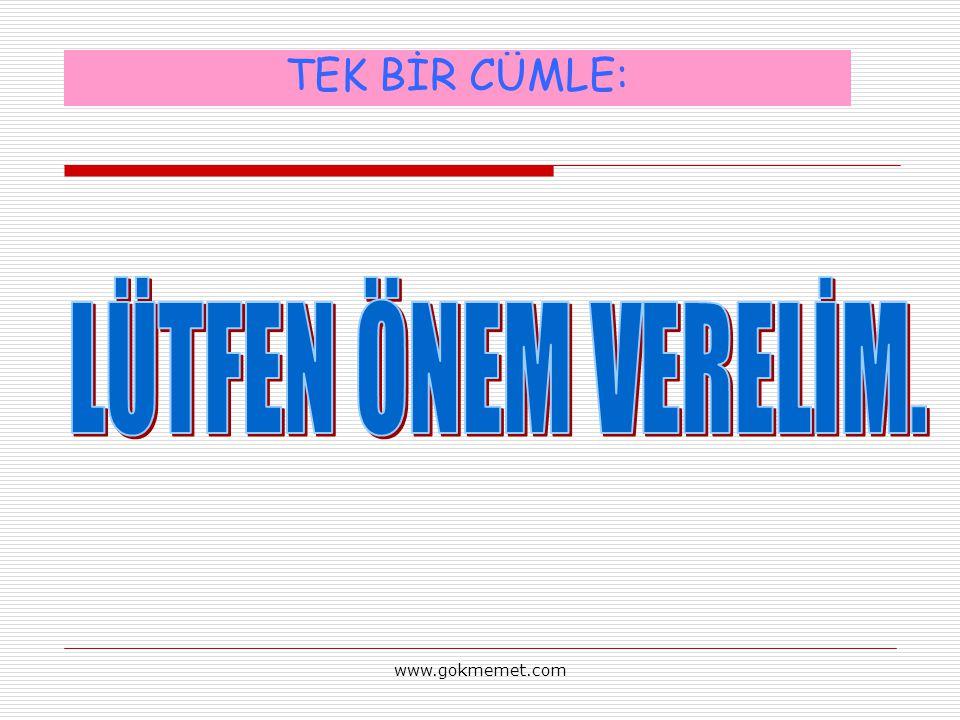 www.gokmemet.com TEK BİR CÜMLE: