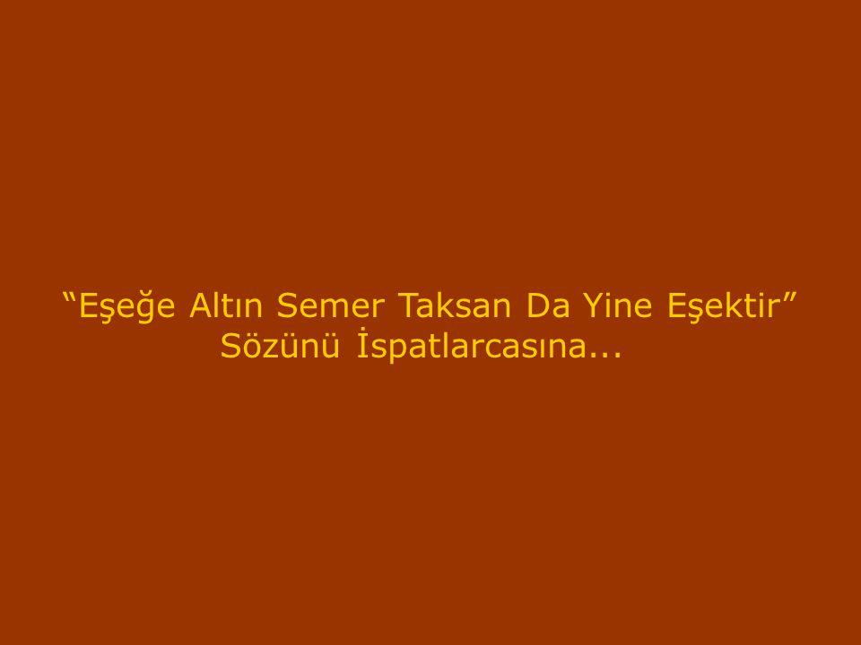 """""""Eşeğe Altın Semer Taksan Da Yine Eşektir"""" Sözünü İspatlarcasına..."""