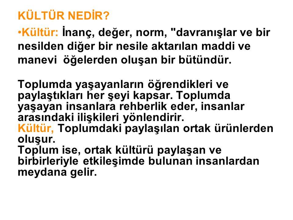 Toplumda Kültür Öğeleri a) Maddi Kültür Öğeleri: Binalar, her türlü araç-gereç, giysiler vb.