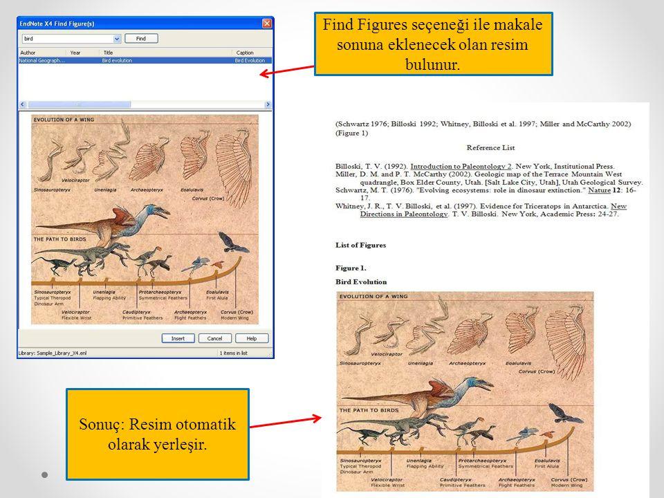 Find Figures seçeneği ile makale sonuna eklenecek olan resim bulunur. Sonuç: Resim otomatik olarak yerleşir.
