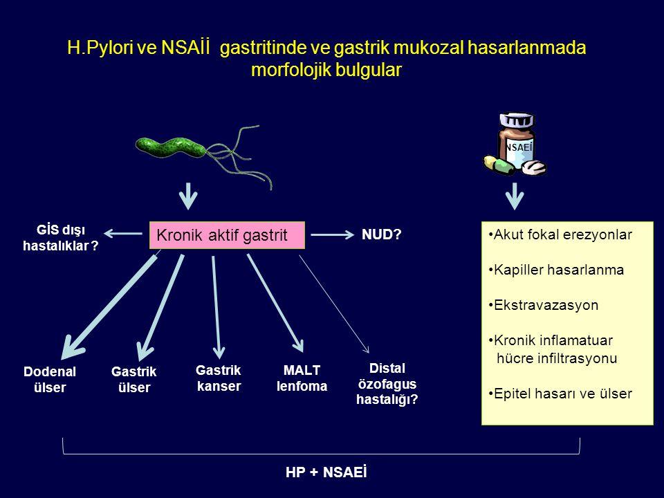 H.Pylori ve NSAİİ gastritinde ve gastrik mukozal hasarlanmada morfolojik bulgular Kronik aktif gastrit Dodenal ülser Akut fokal erezyonlar Kapiller ha