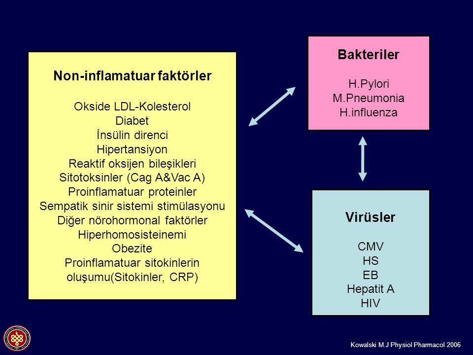 Non-inflamatuar faktörler Okside LDL-Kolesterol Diabet İnsülin direnci Hipertansiyon Reaktif oksijen bileşikleri Sitotoksinler (Cag A&Vac A) Proinflam
