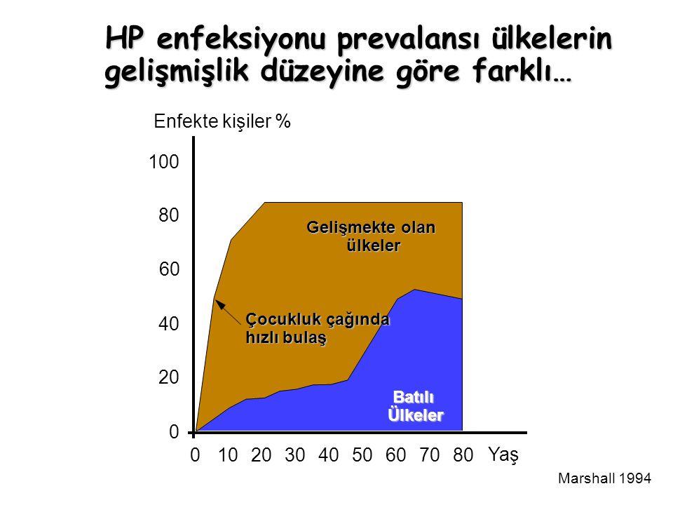HP enfeksiyonu prevalansı ülkelerin gelişmişlik düzeyine göre farklı… 100 80 60 40 20 0 Enfekte kişiler % 01020304050607080 Yaş Marshall 1994 Gelişmekte olan ülkeler BatılıÜlkeler Çocukluk çağında hızlı bulaş