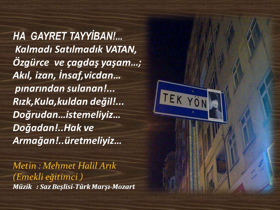 HA GAYRET TAYYİBAN!...