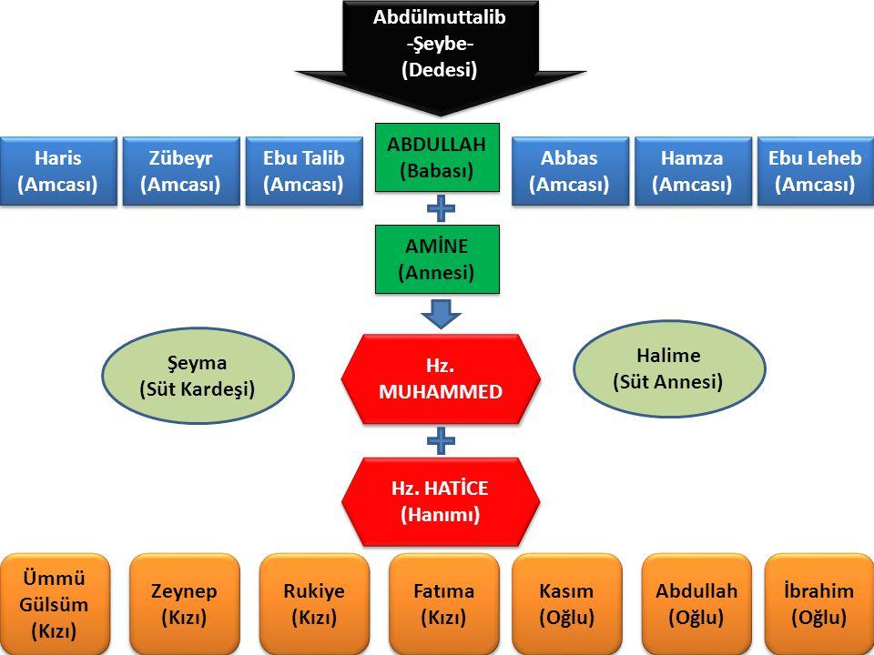 Abdülmuttalib -Şeybe- (Dedesi) Abdülmuttalib -Şeybe- (Dedesi) Haris (Amcası) Haris (Amcası) Zübeyr (Amcası) Zübeyr (Amcası) Ebu Talib (Amcası) Ebu Tal