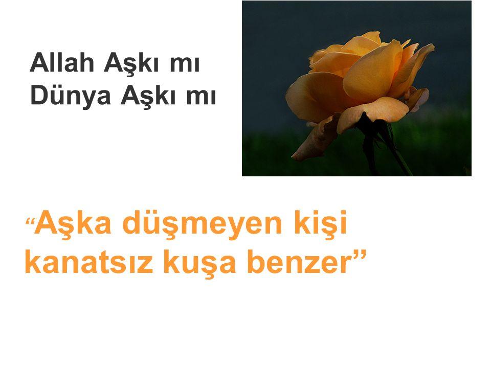Allah Aşkı mı Dünya Aşkı mı Aşka düşmeyen kişi kanatsız kuşa benzer