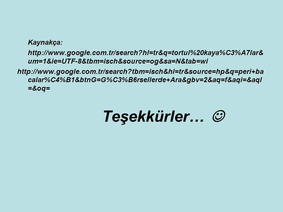 Kaynakça: http://www.google.com.tr/search?hl=tr&q=tortul%20kaya%C3%A7lar& um=1&ie=UTF-8&tbm=isch&source=og&sa=N&tab=wi http://www.google.com.tr/search