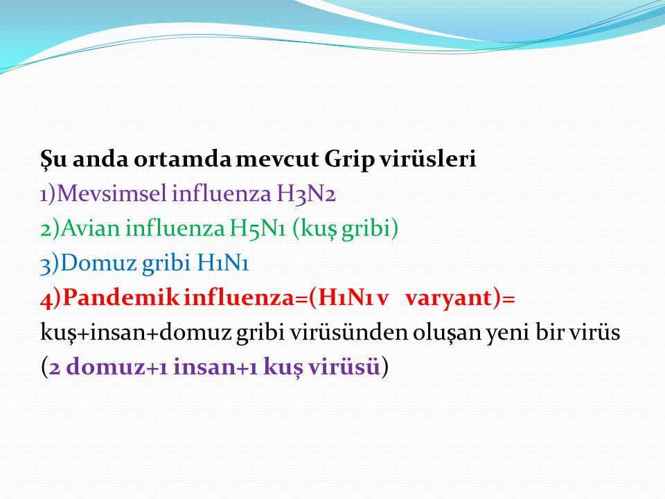 Şu anda ortamda mevcut Grip virüsleri 1)Mevsimsel influenza H3N2 2)Avian influenza H5N1 (kuş gribi) 3)Domuz gribi H1N1 4)Pandemik influenza=(H1N1 v va