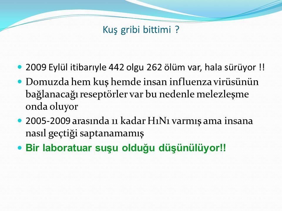 Kuş gribi bittimi ? 2009 Eylül itibarıyle 442 olgu 262 ölüm var, hala sürüyor !! Domuzda hem kuş hemde insan influenza virüsünün bağlanacağı reseptörl