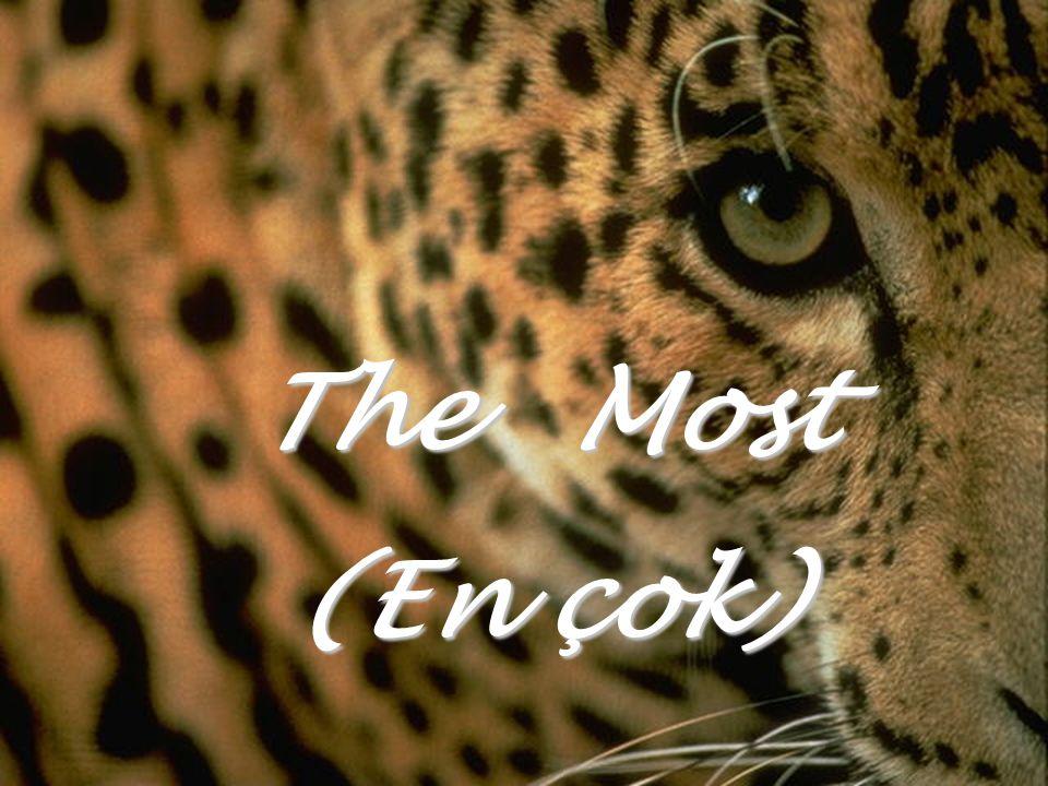 The Most (En çok)
